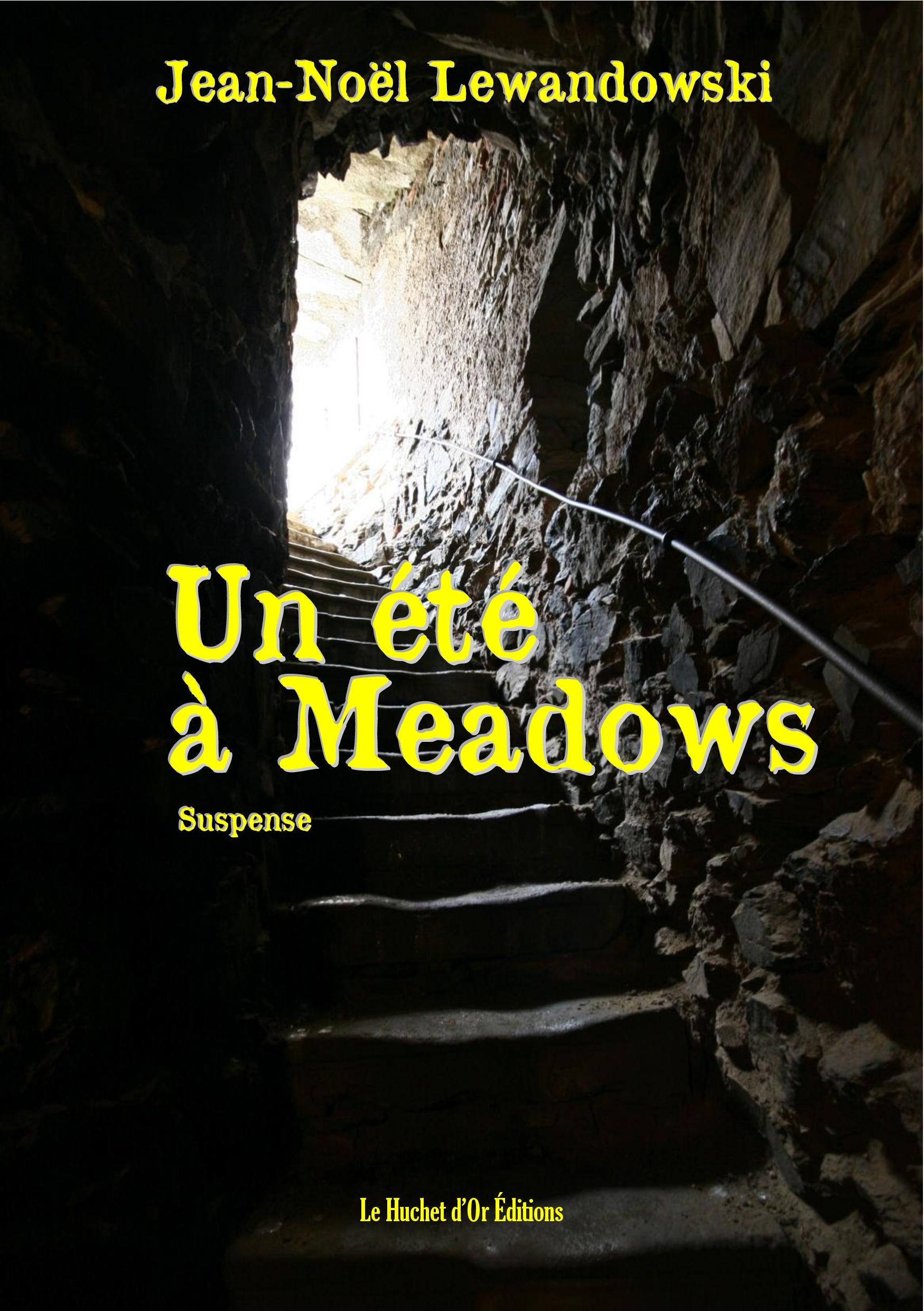 UN ETE A MEADOWS